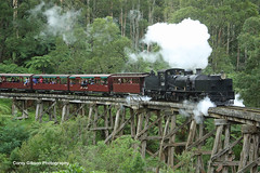 Puffing Billy Railway G42 crossing Monbulk Trestle Bridge (Australian Trains) Tags: railroad heritage station train photography track power photos transport australian tracks engine rail railway loco australia trains victoria tourist class lakeside steam na corey transportation landslide billy vic locomotive gibson railways gauge emerald freight locomotives railroads narrowgauge belgrave puffing selby ralway puffingbillyrailway railpage railpage:class=84