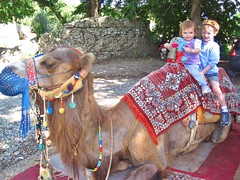 Riding the Camel (desben) Tags: turquie camel romain aspendos celeste
