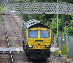 Freightliner Class 66 - 66596 - Long Eaton Town (NewSpectrum) Tags: diesel ying shed engine loco 66 class fred locomotive longeaton freightliner toton 66596 0z34 6z34 4z34