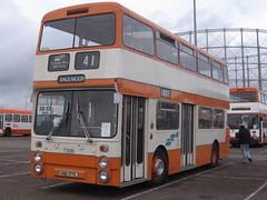 VNB177L_31102009a (Rossendalian2013) Tags: bus manchester preserved daimler fleetline gmpte greatermanchestertransport northerncounties vnb177l crg6 selnecpte