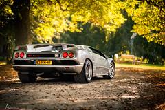 Lamborghini Diablo (Ansho.nl) Tags: autumn holland art netherlands dutch car by silver grey drive foto events herfst performance diablo te lamborghini vt d800 dikke petrolhead d600 santpoort 2013 bijlmakers ansho anshonl autofotoshoot