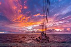 Sunset over the Atlantic (Nov 8, 2013) #2 (Amazing Sky Photography) Tags: sunset canada twilight atlanticocean sunsetclouds starflyer sunsetcolours atmosphericphenomena starclippers