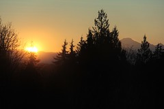 2013-12-07 - Sunrise near Mt. Baker, with trees in the way, through a dirty double pane window because it's cold out and I'm wearing shorts. (Ken_Lord) Tags: trees cold silhouette sunrise canon volcano mt baker shadows ngc mount dslr crackofdawn 60d maleridge