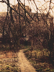 Leaving Sanctuary (Matt.CN) Tags: new eve winter house color leave garden way europe path year poland end perish