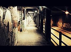 sottopassoVialeCascinePisa (mimmoveneziano79) Tags: street streetart art strada artisti lavoro vecchia dismessa fabbrica archeologiaindustriale dismissione delocalizzazione