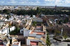 Seville from the top of the Giralda (2) (Prof. Mortel) Tags: spain minaret seville andalucia giralda almohad