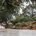 IMG_0421 Samburu, Kenya