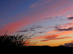 fading light (rospix) Tags: uk pink blue light sunset sky orange cloud nature weather silhouette wales clouds countryside hills hedge february 2014 climatecontrol globaldimming geoengineering weathermanipulation rospix solarradiationmanagement