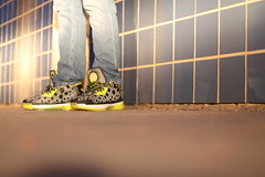 "li-ning Way Of Wade 2- ASG 2014 Stingwade ""Volt"" (28gSneakers) Tags: lining wow2 sneakerhead dwade makeyourownway makethechange wayofwade liningbasketball stingwade stingwadevolt"