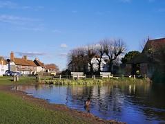 Haddenham, Buckinghamshire (Oxfordshire Churches) Tags: panasonic lumixgx1 mft microfourthirds micro43 england uk unitedkingdom ©johnward ponds duckponds ducks aylesburyducks memorialbenches explore explored inexplore