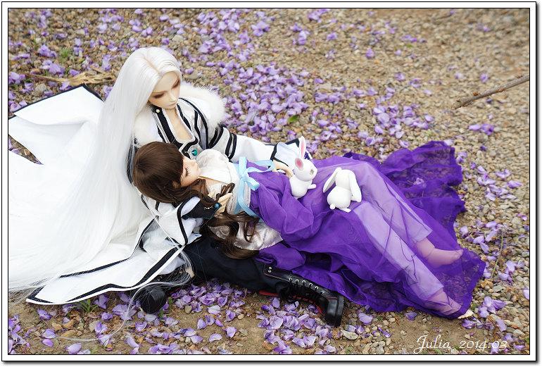 紫藤、老梅 (41)