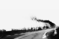 (Lacunar Spectare) Tags: road trip trees blackandwhite bw abstract blur france texture nature canon landscape photography eos photo noiretblanc contemporary memories florent vende negroyblaco boissinot lacunarspectare
