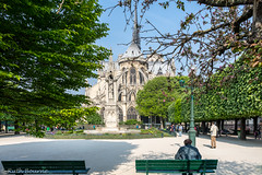 In the park (Ruth Flickr) Tags: park city man paris france bench spring notredame mairie paris149