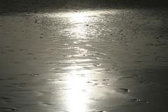 Sol reflejado en la orilla de Maspalomas