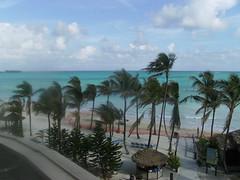 nassau 2012 013 (tariq.hossenbux) Tags: vacation holiday fish bird beach fry cable beaches bahamas nassau