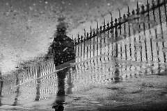 Quai de la rapée (flallier) Tags: paris reflet eau reflect water grilles silhouette xii flaque quai rapée puddle bnw