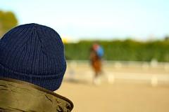 The Coach (DannyDuvel) Tags: horse canon caballo coach riding desenfoque entrenador chevale