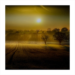 #This morning (Eric Goncalves) Tags: morning winter light england mist cold color nature beautiful sunrise canon landscape golden landscapes vibrant gloucestershire rays contrejour thismorning 6d lydney ericgoncalves