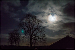 Moony Night Scene (mikeyp2000) Tags: