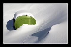 Zerbait berdea --- Algo verde (Javier Beristain) Tags: euskalherria elurra gipuzkoa berdea negua azkoitia izarraitz xakela