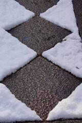 雪の両足院-1