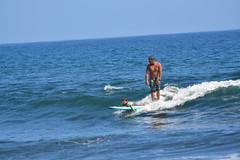 Tandem Surfing. (aliciadesign) Tags: surf whales bigisland honolii