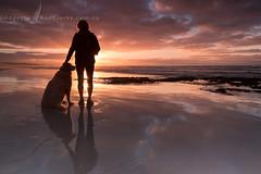 Sharing the moment (Images by Ann Clarke) Tags: summer dog clouds sunrise australia coastline southaustralia bestfriends reflectionssunrise wwwimagesbyannclarkecomau feb2015