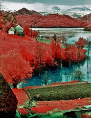 Lake Geamana, Hunedoara County (Romania) (bill bold II) Tags: 120 film mediumformat romania analogue 6x7 colorinfrared expiredfilm hunedoara homedeveloped kodakeir colourinfrared pentax67ii kodakaerochrome fujixpressc41 lakegeamana