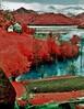 Lake Geamana, Hunedoara County (Romania) (bill bold II) Tags: 120 film mediumformat romania analogue 6x7 colorinfrared expiredfilm hunedoara homedeveloped kodakeir colourinfrared pentax67ii kodakaerochrome fujixpressc41 lakegeamana