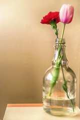 Rum Bottle Vase **Explored** (flashfix) Tags: pink flowers red stilllife ontario canada nature floral book flora nikon ottawa tulip vase rum 40mm carnation 2016 d7000 2016inphotos may142016 rumjug