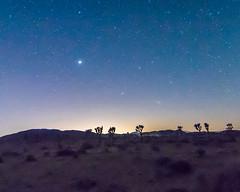 New Moon June 2016 #5 (MarcCooper_1950) Tags: sky skyscape stars landscape outside outdoors nikon scenery moody desert dramatic astrophotography nightsky hdr lightroom milkyway starlight longeposure d810 desertnight marccooper aurorahdr