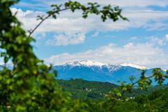 DSC_0061 (sergeysemendyaev) Tags: mountains palms spring russia adler sochi greenandwhite 2016 snowpeaks        pravoslavnayastreet palmsandsnowpeaks