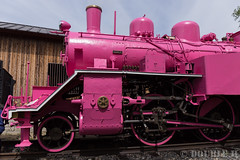 Pink SL at Wakasa Railway (29) (double-h) Tags: sl tottori jnr steamlocomotive c12   eos6d  ef2470mmf4lisusm  pinksl wakasarailway  c12 c12167 wakasastation classc12 c12 sl
