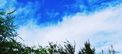 Azul Cielo (Carlos Durn Photography/CAD) Tags: cloud naturaleza nature azul cielo mao hd amina rd republicadominicana nuves valverde carlosduran haltadefinicion