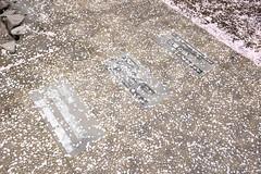 DSCF1513 (chinnian) Tags: japan aomori  fujifilm x70  towada  towadaartcenter  fujifilmx70