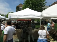 panorama, art festival 2016 east lansing (anthroview) Tags: artfestival canons110 48823