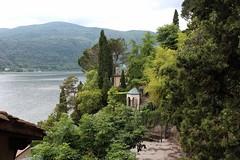 Morcote (bulbocode909) Tags: tessin suisse vert arbres lacs printemps montagnes morcote