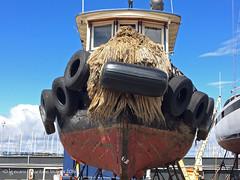 7636_Adaline (lg evans Maritime Images) Tags: tugboat tug lge adaline seattlewa onthehard lgevans maritimeimages ©lgevans seaviewwest