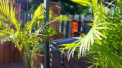 Oeuvre Leelooart pour jardin & terrasse (Leelooart) Tags: fleur photography photo photographie terrasse jardin tableau oeuvre dcoration dco color ambiance barnwood ecodesign amnagementpaysag boisdegrange