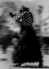4798 (G de Tena) Tags: espaa blanco sol canon calle sevilla europa negro andalucia bn zapatos flamenco palmas bailar gitana lunares sevillla trajedegitana taconear canong12