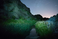 Banks Lake (bombeeney) Tags: nightphotography lake water night reeds dark stars washington rocks sony astro moonrise astrophotography pacificnorthwest astronomy marsh nightsky pnw easternwashington scablands channeledscablands a7s zeissloxia21mm