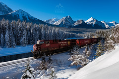 Morant's Curve, Banff National Park - Alberta, Canada (Damien Seidel) Tags: travel winter mountain snow canada cold ice forest train landscape nikon rocks transport railway hike cargo alberta banff rockymountains canadianpacific trainspotting bowriver patience bowvalley morantscurve nikond810