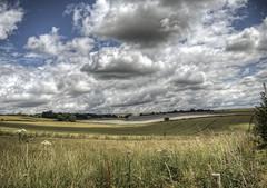 Near Ichen Abbas, Hampshire (neilalderney123) Tags: landscape ol olympus hampshire poppies itchenabbas olympusuk 2016neilhoward