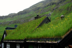 Faroese roofs (Jaedde & Sis) Tags: faroeislands froyar green grass roof 15challengeswinner