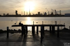 0D6A1629 - orica sunset (Stephen Baldwin Photography) Tags: sunset water birds clouds landscape industrial waterfront australia nsw stockton orica