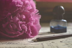 I'll write you a letter (RoCafe) Tags: pink stilllife soft peony romantic nikond600 nikkormicro105f28