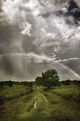 Somewhere (Wayne Greer) Tags: storm clouds rainbow meadow waynegreer kansaslandscapephotography