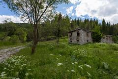 IMG_0951-309 (Martin1104) Tags: fotografie natuur bergen landschap vlinders yagodina snp bulgarije natuurfotografie natuurreis