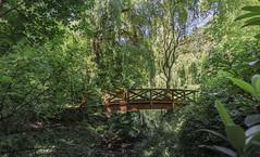Stadtpark Chemnitz (meisternam17) Tags: chemnitz park vacation flickr instagram stadtpark natur fluss landschaft wald brcken romantik sachsen reisen urlaub holiday travel journey