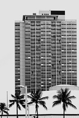 From the Blaisdell Center parking lot (Guy: Jussum Guy) Tags: trees blackandwhite monochrome hawaii oahu palm arena dome highrise honolulu condos blaisdell pentaxk3